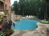 Image 9 | Top-Notch Pool Management