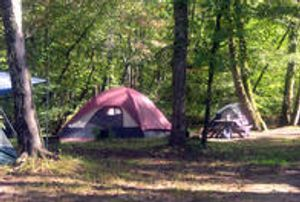 Image 5 | Jenny's Creek Family Campground