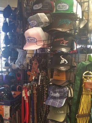 Image 7 | Moss Saddles Boots & Tack