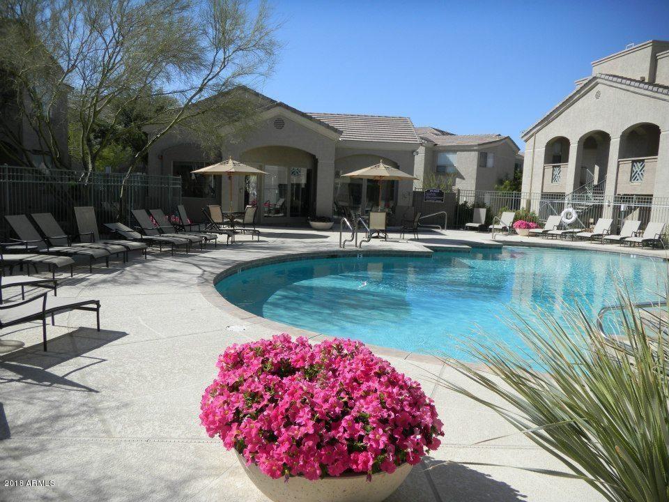 29606  N TATUM 105  Boulevard Cave Creek AZ 85331