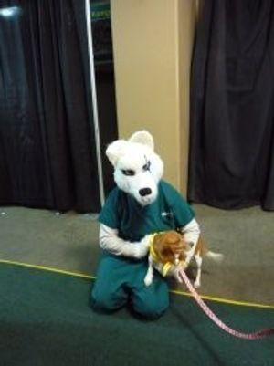 Image 4 | VCA Bering Sea Animal Hospital