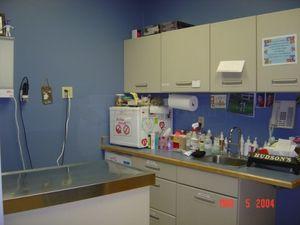 Image 6 | East Boston Animal Hospital