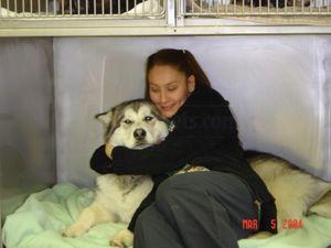 Image 3 | East Boston Animal Hospital