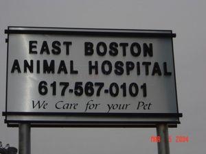 Image 4 | East Boston Animal Hospital