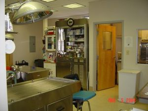 Image 2 | East Boston Animal Hospital