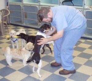 Image 6 | VCA Brookline Animal Hospital
