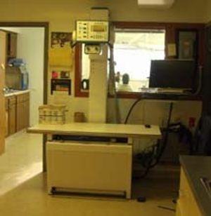 Image 5   Glendale Animal Hospital