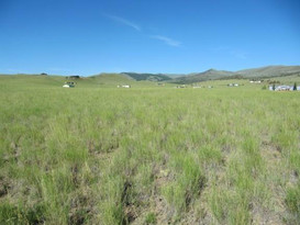 Lot-229 Virginia City Ranch Ennis