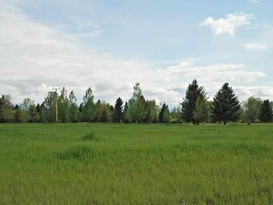 Lot-5 Churn Creek  Bozeman