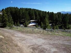 331 Quinn Creek Road  Livingston