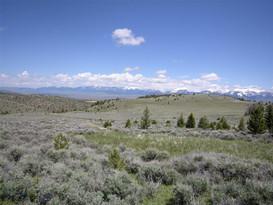 Lot-219 Shining Mountains II Ennis