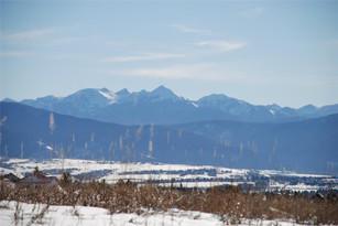 8508 Panorama Drive  Bozeman