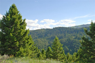 Lot-1 Timbercrest Estates Lot 1 Tract 3529  Bozeman
