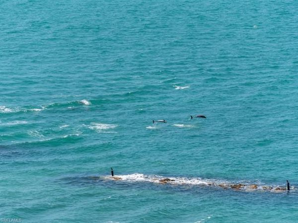 940 Cape Marco Dr #2005, Marco Island, Fl 34145