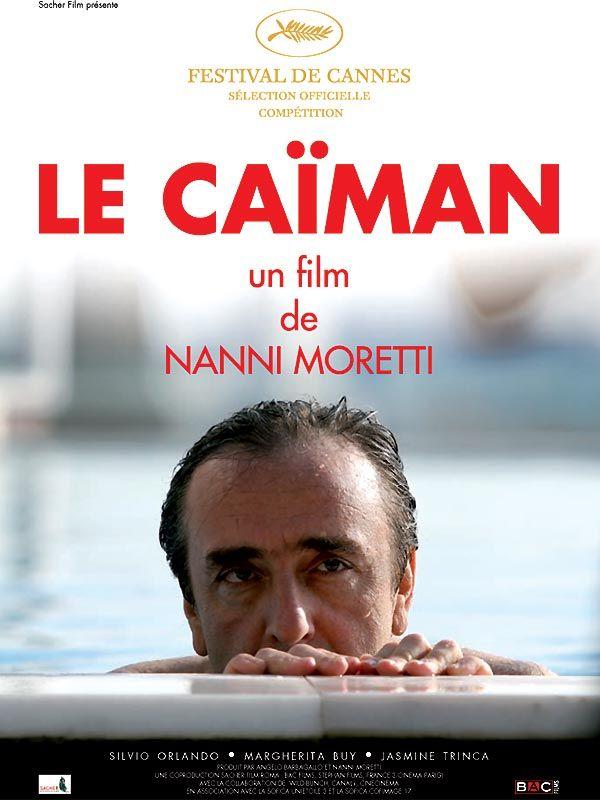 Il Caimano 2006 MULTI DVDRip AVC x264-TAD™ [Le caïman]