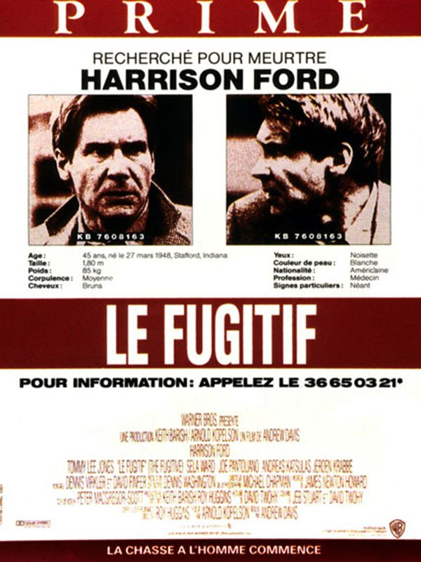 Le Fugitif 1993 Multi HDLight 1080p x264 AAC