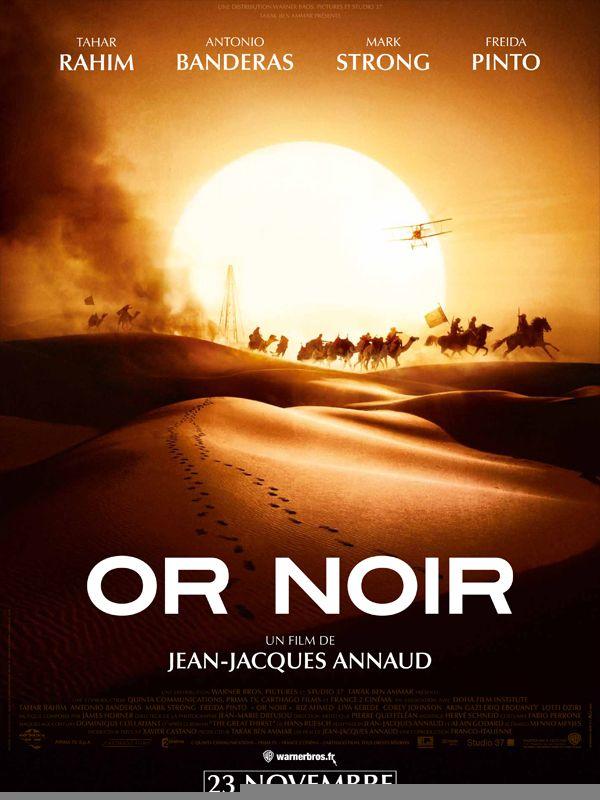 Or noir (2011) MULTI TRUEFRENCH 1080p BluRay REMUX AVC DTS HDMA-Merlinou