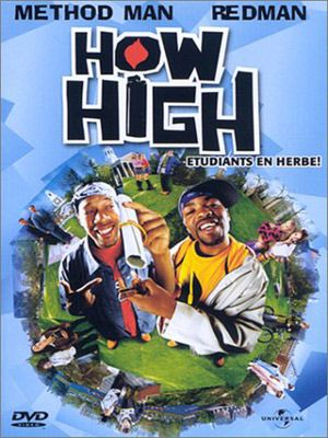 How High 2001 MULTi AC3 1080p HDLight-x264 GHT