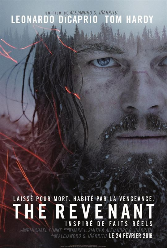 The Revenant 2015 TRUEFRENCH SUBFORCED BRRip x264 AC3-FREAKY