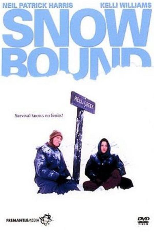 SNOWBOUND [ TEMPETE DE NEIGE ] -  ( 2001 ) - FRENCH - DVDRIP - ( X264 - AAC )