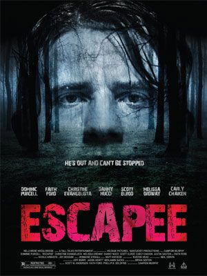 Escapee 2011 FRENCH DVDRip XviD MP3