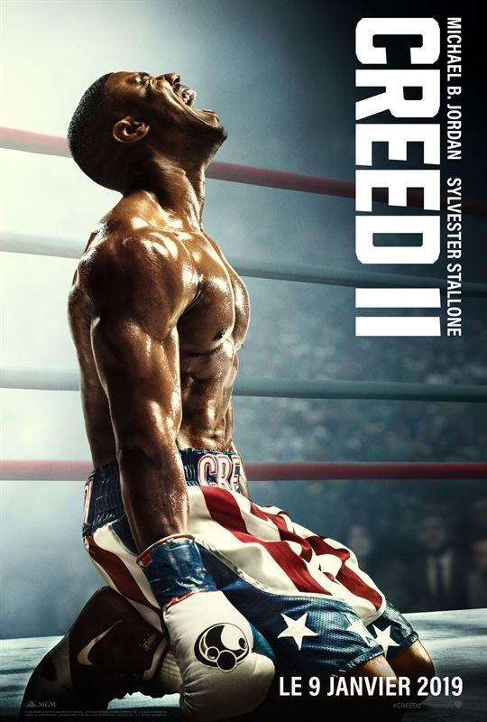 Creed II 2018 TRUEFRENCH DVDRip x264-PiCKLES