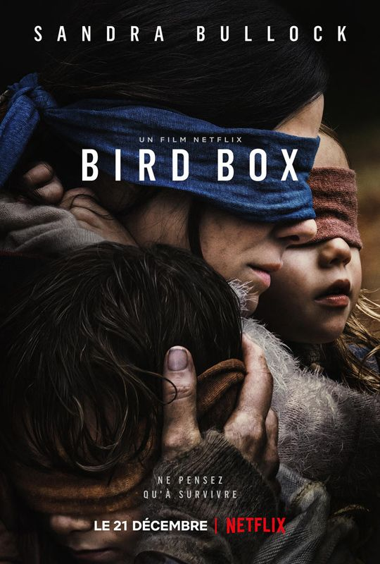 Bird Box 2018 MULTI VFF 1080p 10Bit BluRay 6CH x265 HEVC