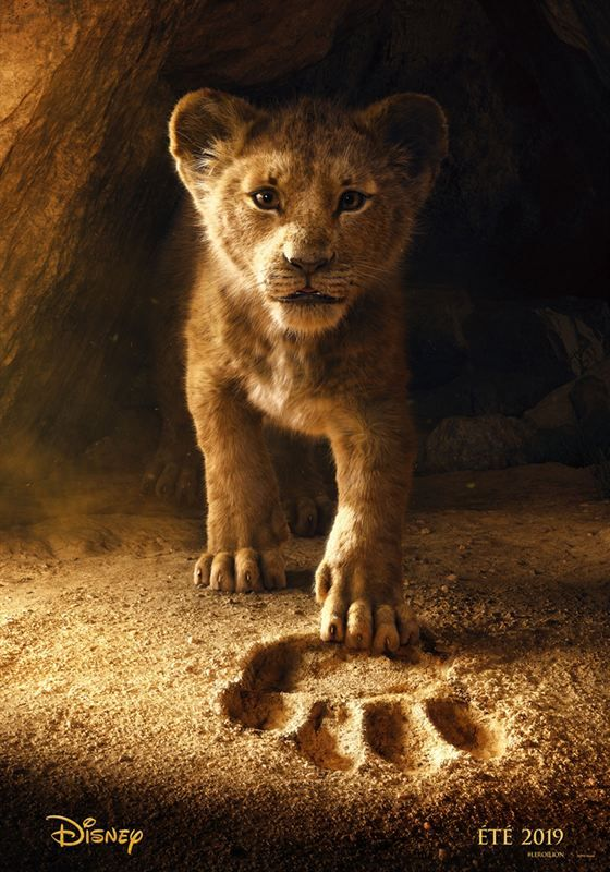 The Lion King 2019 MULTi 1080p Blu-ray DTS-HDMA 7 1 HEVC-DDR[EtHD] mkv