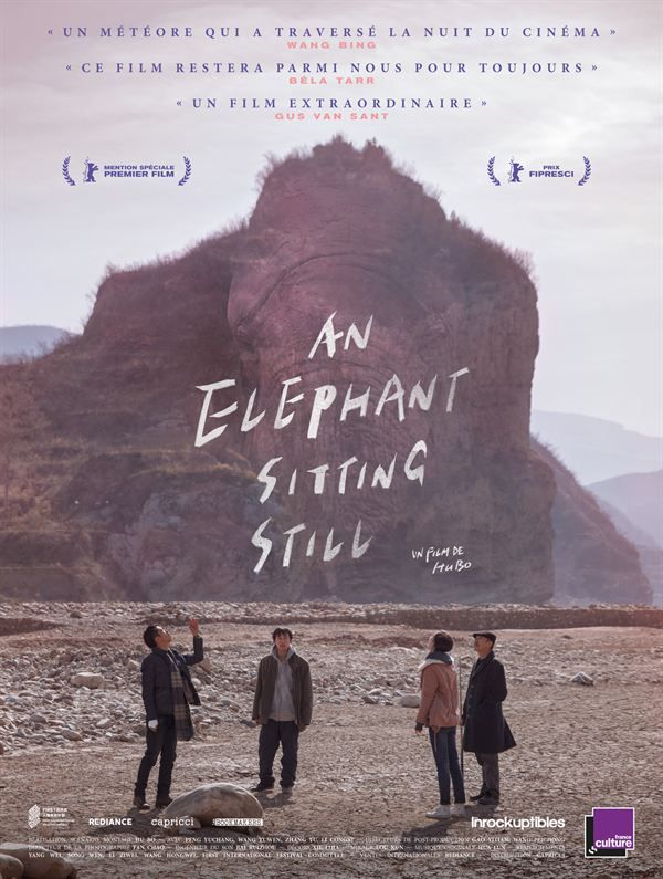 An Elephant Sitting Still 2018 VOSTFR 1080p BluRay REMUX AVC AC3 5 1-NEO