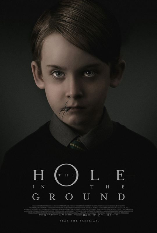 The Hole In The Ground 2019 MULTi TRUEFRENCH 1080p BluRay x264 AC3-STVFRV