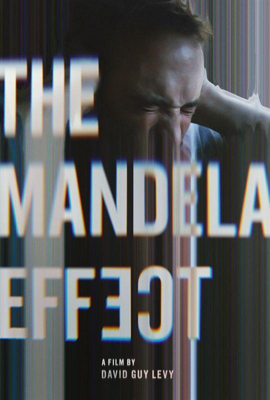 The Mandela Effect 2019 FANSUB VOSTFR 1080p WEBRip x264 AC3-Mjc-Dread-Team