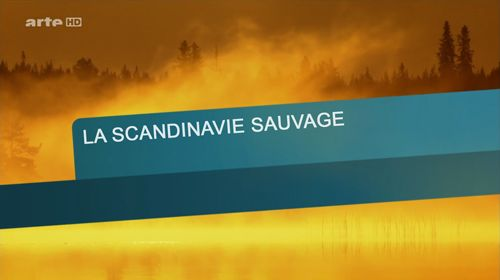 Scandinavie_sauvage.jpg