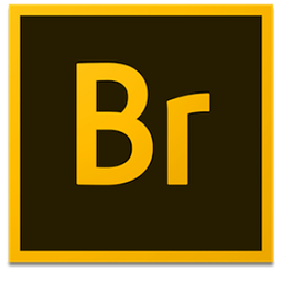 Adobe Bridge 2020 v10.1.0.163 64 Bit - Ita