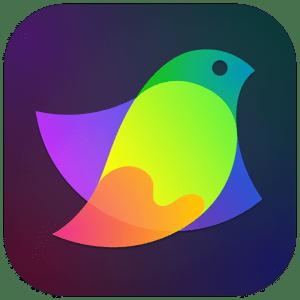 [MAC] Amadine 1.0.8 macOS - ENG