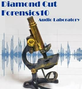 Diamond Cut Forensics10 Audio Laboratory 10.06 - ENG