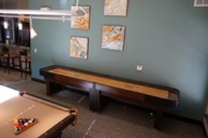 Billiards Room with Shuffleboard