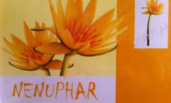 Wenduine - Apt 3 Slpkmrs/Chambres - Nenuphar