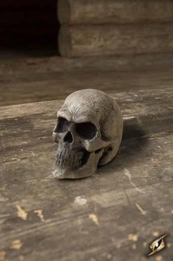 Petit crâne