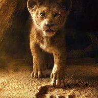 Acenox
