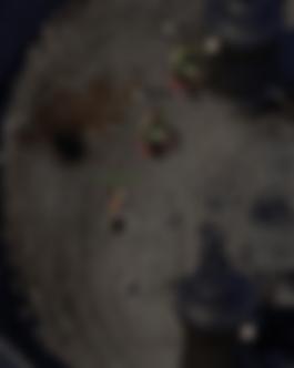 image-20200401144857432