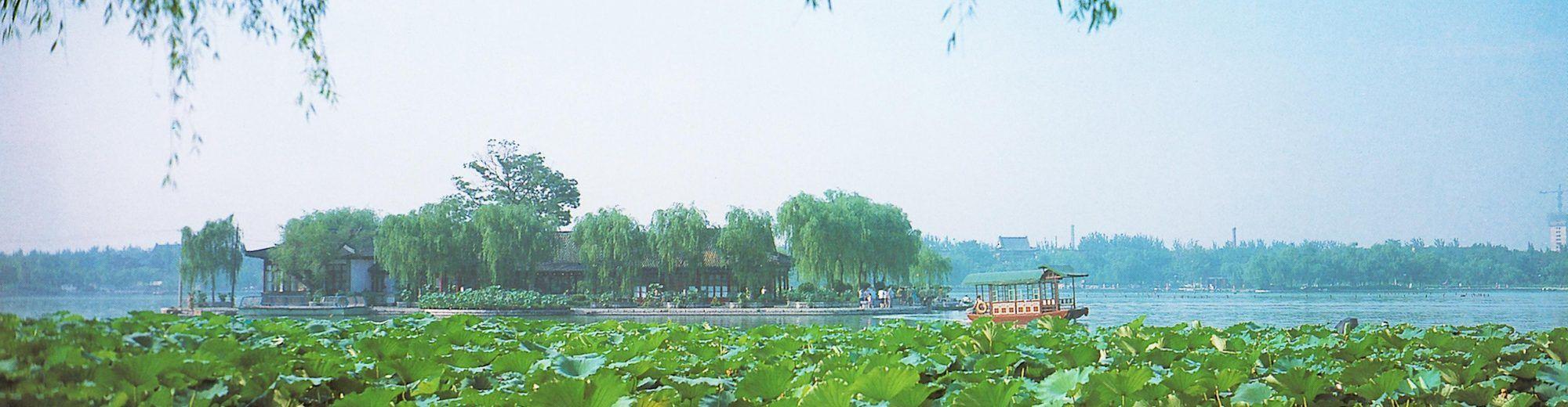 Tong Zhu Research Group