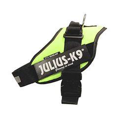 Julius K-9 IDC Power 1 - Correas y collares para perros