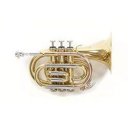 Roy Benson PT-302 - Trompetas