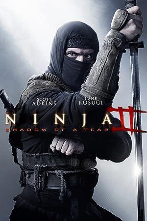 Ninja: Shadow of a Tear