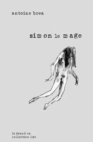 Simon le mage
