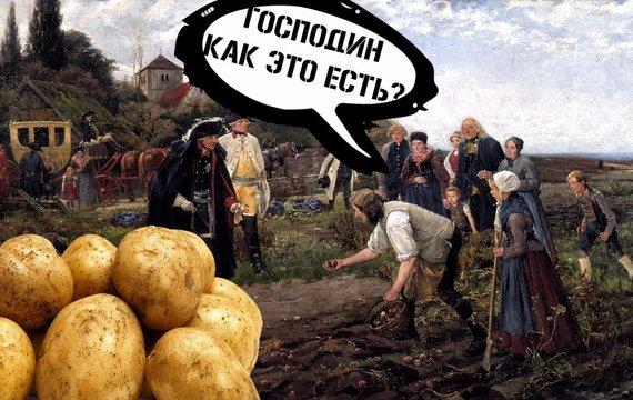 Про картоплю та антивакцинаторів: чому люди борються проти «новітньої отрути»