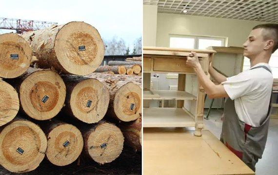 Через відсутність прозорого ринку деревини Україна втрачає шанси стати світовим меблевим лідером