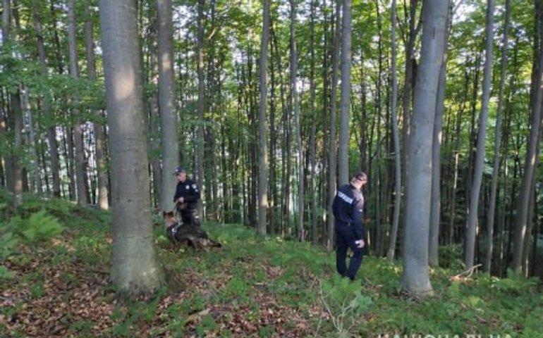 У Закарпатській області знайшли чотирьох заблукалих дітей