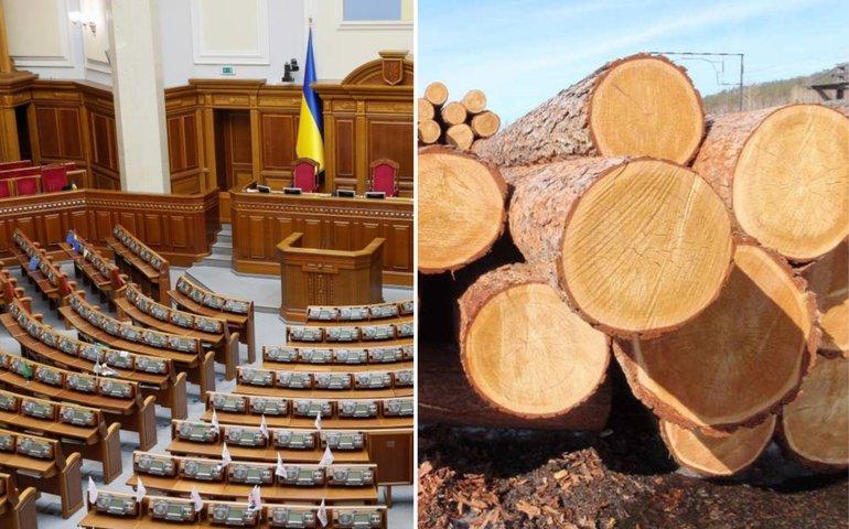 «Не мораторієм єдиним»: чомуварто працювати із законопроектом №4197-Д «Про ринок деревини»