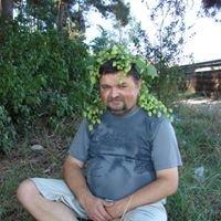 Dmytro Podkova